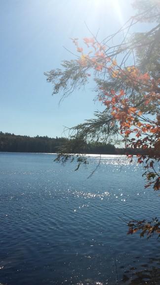 20141010_100545 lake pic turning leaves